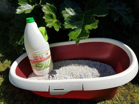 ADVICE MAIN IMAGE Nettoyer et désinfecter la litière du chat