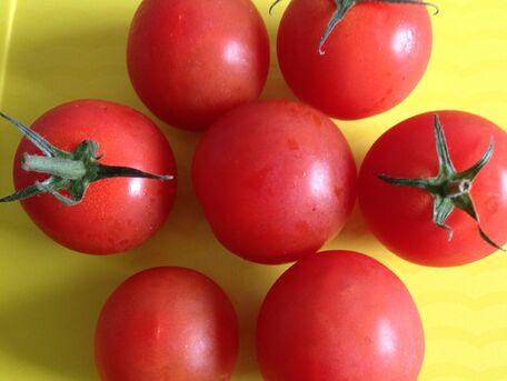 ADVICE MAIN IMAGE Avoir de belles tomates rouges dans son jardin