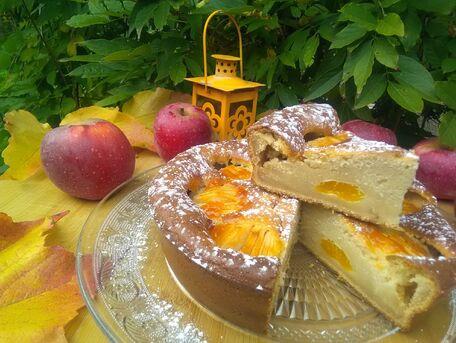 RECIPE MAIN IMAGE Gâteau aux pommes et clémentines