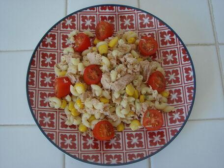 RECIPE MAIN IMAGE Salade de coquillettes au thon