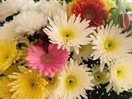 ADVICE MAIN IMAGE Bien conserver son bouquet frais