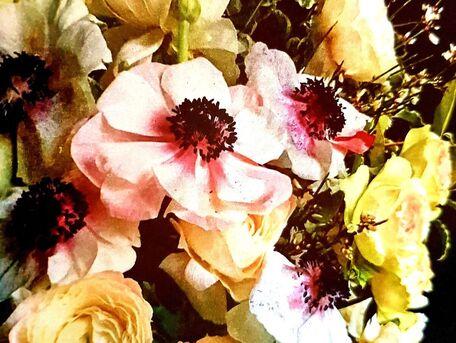 ADVICE MAIN IMAGE Mieux conserver un bouquet de fleurs coupées
