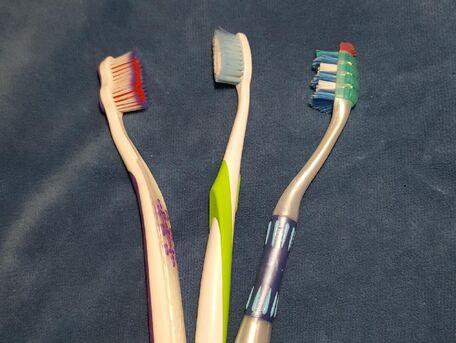 ADVICE MAIN IMAGE Le pouvoir des brosses à dents