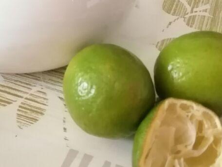 ADVICE MAIN IMAGE Le citron contre le calcaire!