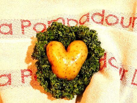 ADVICE MAIN IMAGE Show patate !