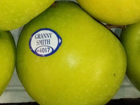 ADVICE MAIN IMAGE Votre fruit est-il bio ou non ?