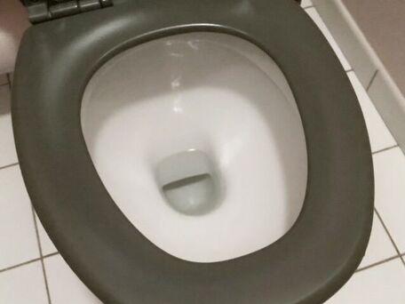 ADVICE MAIN IMAGE Détartrer les WC sans effort.