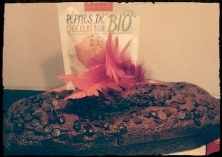 RECIPE MAIN IMAGE Cake tout chocolat