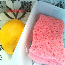 Désinfecter une éponge avec du jus de citron