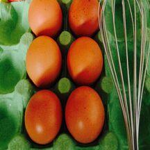 Des conseils pour bien choisir ses œufs