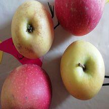 Brochette de boudins aux pommes