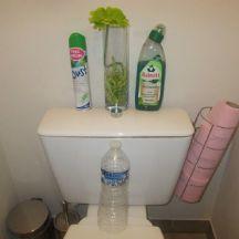 recipes conseil d boucher les wc simplement une bouteille d 39 eau en plastique shopadvizor. Black Bedroom Furniture Sets. Home Design Ideas