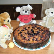 Gâteau bio aux céréales et raisins sauvages