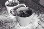 RECIPE THUMB IMAGE 2 Mug cake chocolat coulant cuit en 2 minutes