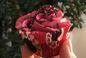 RECIPE THUMB IMAGE 3 Cup cake girly rose