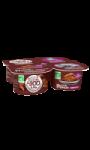 Mousse au chocolat Les 300&Bio