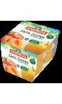 Compote pomme abricot sans sucres ajoutés Andros