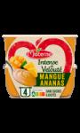Compotes mangue ananas Materne