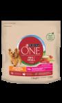Croquettes pour chien moins 10kg peau saine et pelage soyeux boeuf et riz Purina One