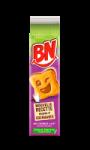 Biscuits goût chocolat au lait BN