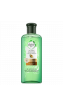 Shampooing Aloe Vera Huile d'Avocat Herbal Essences