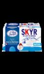 Skyr au lait de brebis nature Le Petit Basque
