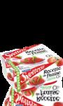Yaourt Nestlé Sveltesse Recette de fraise touche de menthe
