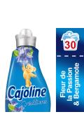 Cajoline Adoucissant Concentré Fleur Passion Bergamote 750ml 30 Lavages
