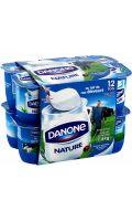 Yaourts nature Danone
