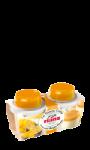Desserts Panna Cotta mangue passion Rians