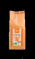 Farine Bio De Châtaigne S/Gluten Mon Fournil