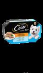 Pâtée pour chien aux viandes César