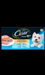 Cesar Senior terrines aux viandes pour chiens senior 4x300g
