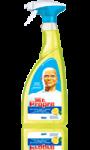 Spray Nettoyant Citron Mr Propre