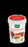 Cup Gaspacho Andalou
