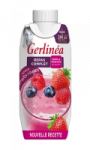 Repas à boire fruits rouges Gerlinéa