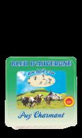 Bleu d'Auvergne cru AOP Puy Charmant