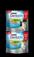 Dentalife Mini et Medium Grand Format Purina