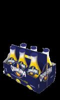 Orangina Pack 6x25cl