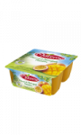 Materne Pomme Mangue Passion Materne 4x100g
