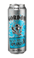 Xplosion Gin Spices Gordon Finest Beers