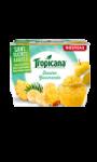 Dessert de Fruits Evasion Gourmande Tropicana