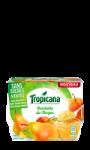 Dessert de Fruits Cueillette du Verger s/s ajoutés Tropicana