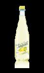 Boisson à l'eau minérale naturelle gazéifiée au jus de fruits Bulles de Fruits par Badoit