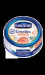 Crevettes sauvages Nautilus