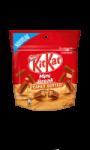 KitKat Mini Break Peanut Butter
