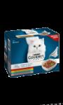Perle régal de sauce pour chat Purina Gourmet