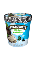 Pot Ben & Jerry's Minter Wonderland