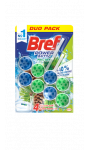 Bref WC Power Activ' Pin Duo-Pack
