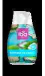 Iba Cône Barrière de Corail